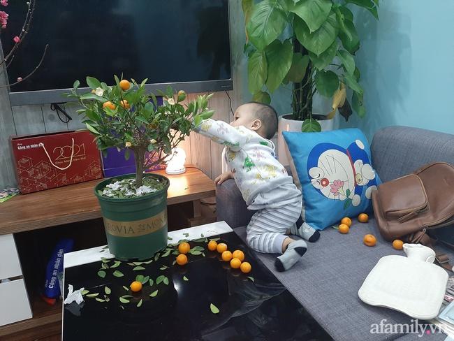 """Đầu tư cây quất xinh xinh chơi Tết chưa nổi 1 ngày, ông bố ngậm ngùi nhìn con trai say sưa chơi trò """"hái quả mùa Xuân"""" - Ảnh 2."""
