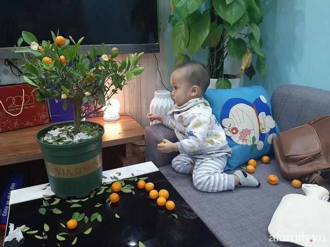 """Đầu tư cây quất xinh xinh chơi Tết chưa nổi 1 ngày, ông bố ngậm ngùi nhìn con trai say sưa chơi trò """"hái quả mùa Xuân"""" - Ảnh 3."""