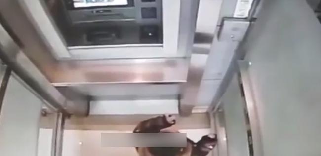 Cậu bé 5 tuổi một mình đi vào cây ATM, hành động sau đó khiến nhân viên ngân hàng kinh ngạc: Đứa trẻ này quá thông minh! - Ảnh 3.