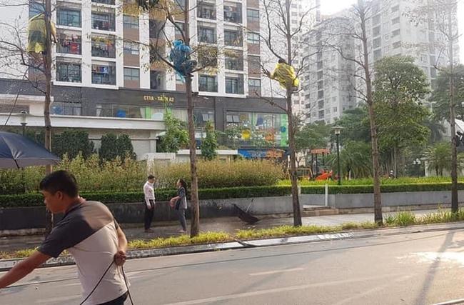 """Hướng dương ngược nắng: Lộ cảnh siêu lãng mạn nhưng hứa hẹn """"tận cùng đau khổ"""" của Minh - Hoàng dưới cơn mưa - Ảnh 3."""