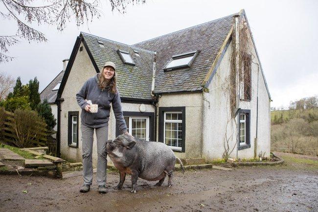 Chú lợn ỉ Việt Nam nặng 130kg bị bỏ rơi bỗng trở thành thú cưng được ăn hạt, nằm lò sưởi ở gia đình Scotland - Ảnh 2.