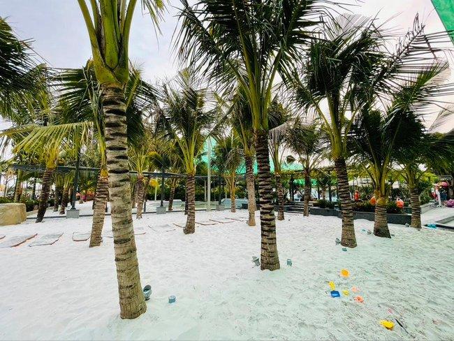 Bất ngờ khi giữa lòng Sài Gòn vẫn có thể tận hưởng biển xanh cát trắng, với 7749 góc check-in cực đẹp cho các chị em - Ảnh 4.