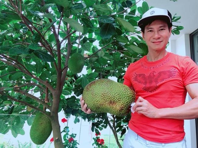 """Lý Hải - Minh Hà trồng cây trên sân thượng mà thu hoạch nặng trĩu tay, phải đăng đàn ai ăn thì biếu bớt """"lấy thảo"""" - Ảnh 8."""
