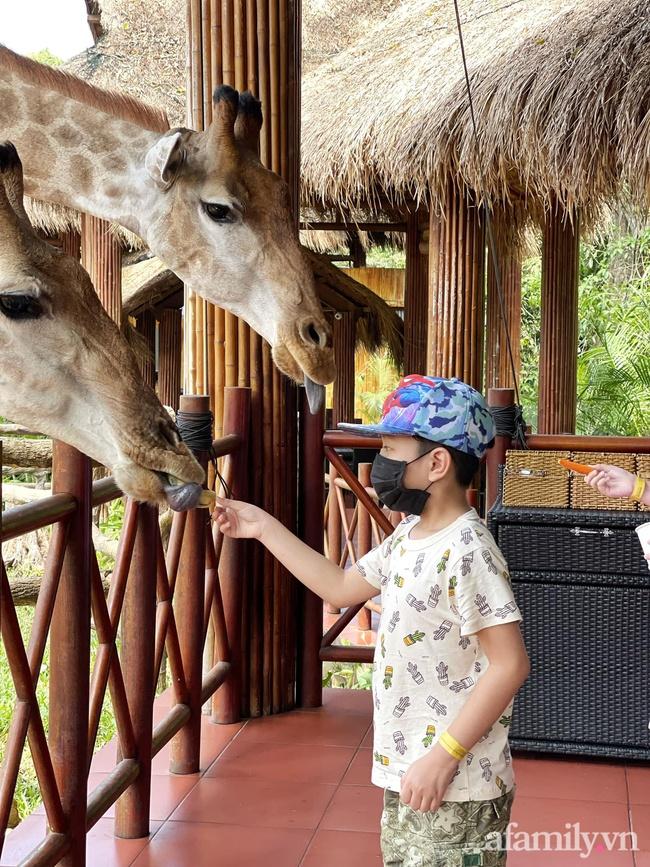 """Mẹ Hà Nội kể hành trình đưa 2 con đi chơi tại Safari Phú Quốc, kết luận một câu: """"Ai đang phân vân thì chốt luôn cho nhanh"""" - Ảnh 8."""