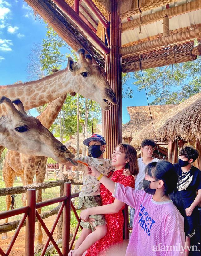 """Mẹ Hà Nội kể hành trình đưa 2 con đi chơi tại Safari Phú Quốc, kết luận một câu: """"Ai đang phân vân thì chốt luôn cho nhanh"""" - Ảnh 9."""