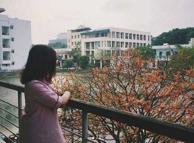 Đại học danh giá bậc nhất Hà Nội, đẹp như phim Trái tim mùa thu: Học sinh nếu 3 môn không đạt từ 9 điểm trở lên thì đừng liều đăng ký - Ảnh 14.