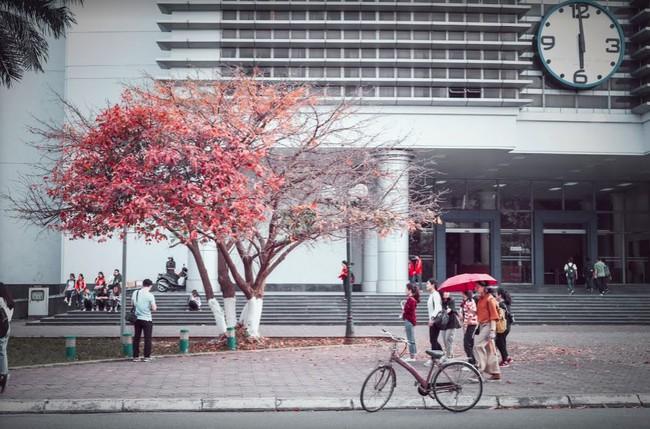 Đại học danh giá bậc nhất Hà Nội, đẹp như phim Trái tim mùa thu: Học sinh nếu 3 môn không đạt từ 9 điểm trở lên thì đừng liều đăng ký - Ảnh 12.