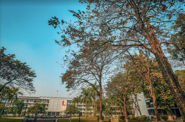 Đại học danh giá bậc nhất Hà Nội, đẹp như phim Trái tim mùa thu: Học sinh nếu 3 môn không đạt từ 9 điểm trở lên thì đừng liều đăng ký - Ảnh 9.