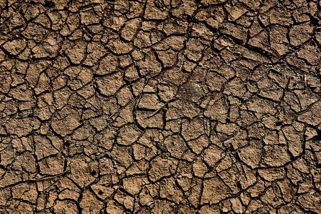 """Hạn hán ở Đài Loan: Cắt nguồn nước của nông dân """"để dành"""" cho nhà máy sản xuất chip, phải hy sinh 1 trong 2 thì mới tồn tại - Ảnh 3."""