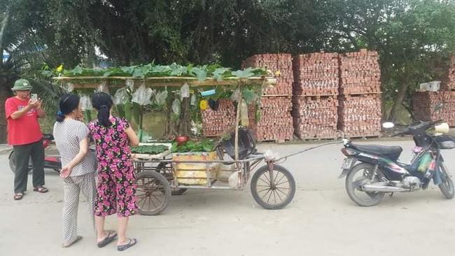 Người đàn ông Hải Phòng gây sốt khi kéo cả dàn cây trĩu quả đi khắp huyện, nhìn ai cũng thấy lạ xúm vào hỏi thì ra là bán mặt hàng này - Ảnh 3.