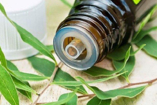Xông tinh dầu đuổi muỗi liệu có ảnh hưởng đến sức khỏe không, sử dụng thế nào mới đúng cách, dùng lâu dài có được không? - Ảnh 4.