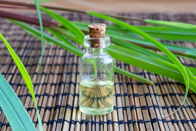 Xông tinh dầu đuổi muỗi liệu có ảnh hưởng đến sức khỏe không? - Ảnh 2.