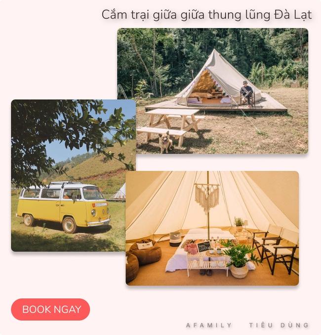 """Đang """"du hí"""" ở Đà Lạt, tham khảo ngay tour trải nghiệm cắm trại Glamping sang chảnh đang hot rần rần giá chỉ từ 400K - Ảnh 7."""