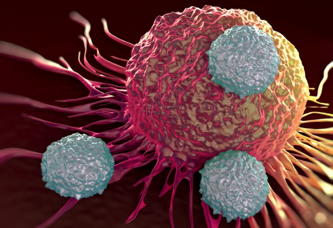 Mắc ung thư gan 15 năm vẫn khỏe mạnh, Giám đốc bệnh viện Ung bướu 81 tuổi tiết lộ 3 sự thật ít người biết về ung thư - Ảnh 5.