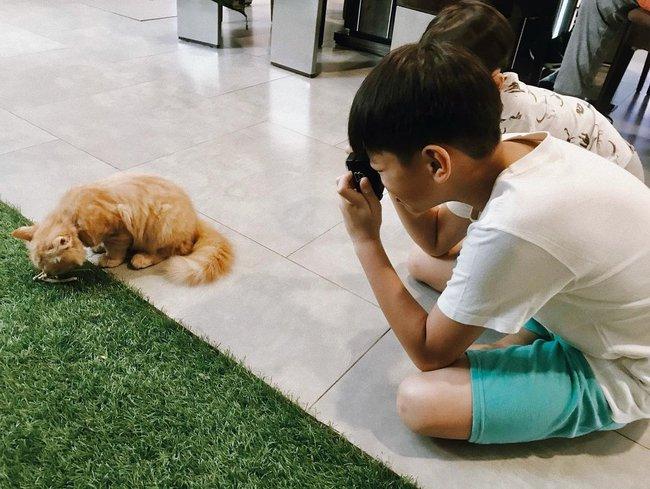 Subeo học làm nhiếp ảnh gia cầm máy đi chụp khắp nhà, nhìn thành quả Hồ Ngọc Hà tiết lộ mới bất ngờ - Ảnh 2.