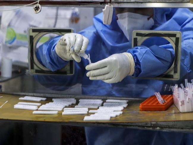 """""""Bão"""" Covid-19 càn quét, Ấn Độ chìm trong tang thương: Biến thể SARS-CoV-2 ở Ấn Độ nguy hiểm như thế nào? - Ảnh 4."""