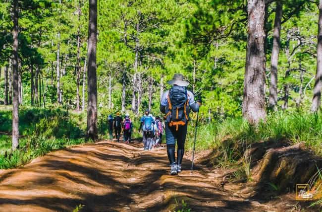 Kỹ năng sinh tồn cần phải biết dù là bạn đi du lịch dài ngày hay chỉ camping 1 ngày - Ảnh 25.