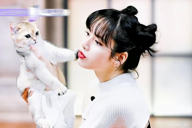 Thanh xuân có bạn 3: Lộ hình cưng xỉu của Lisa (BLACKPINK), còn chu môi hôn mèo khiến netizen phát cuồng - Ảnh 2.