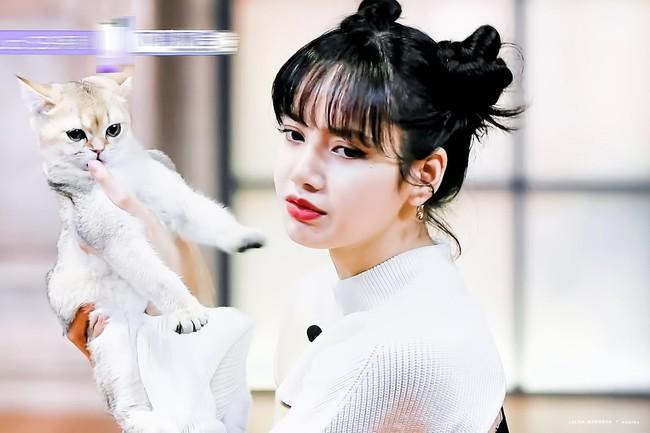 Thanh xuân có bạn 3: Lộ hình cưng xỉu của Lisa (BLACKPINK), còn chu môi hôn mèo khiến netizen phát cuồng - Ảnh 3.