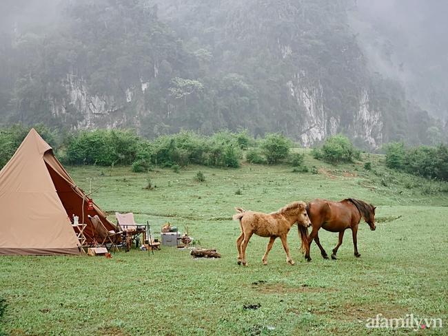 """Một thảo nguyên xanh mướt bao quanh bởi mây và núi đẹp như trong cổ tích hóa ra lại có thật mà ở ngay gần Hà Nội, cuối tuần đưa con đi cắm trại thì """"u mê chữ ê kéo dài"""" - Ảnh 1."""