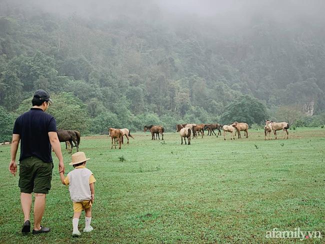 """Một thảo nguyên xanh mướt bao quanh bởi mây và núi đẹp như trong cổ tích hóa ra lại có thật mà ở ngay gần Hà Nội, cuối tuần đưa con đi cắm trại thì """"u mê chữ ê kéo dài"""" - Ảnh 8."""