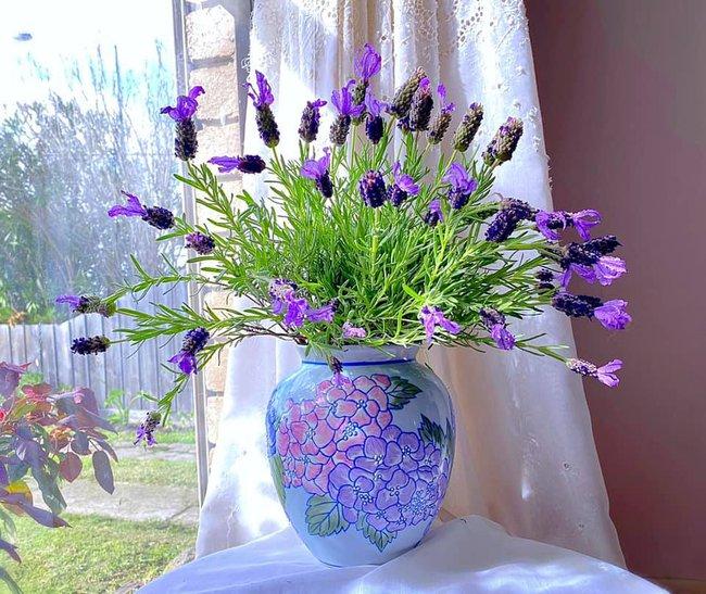 """Bị """"hớp hồn"""" bởi màu trắng tinh khôi của cúc dại, vợ đảm tại Úc thử tài với 1001 cách cắm hoa, tô điểm cho phòng khách trở nên thơ mộng lãng mạn - Ảnh 8."""