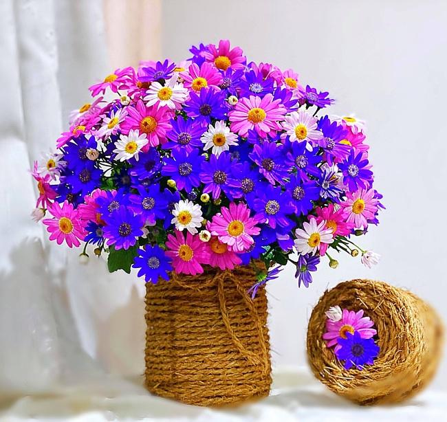 """Bị """"hớp hồn"""" bởi màu trắng tinh khôi của cúc dại, vợ đảm tại Úc thử tài với 1001 cách cắm hoa, tô điểm cho phòng khách trở nên thơ mộng lãng mạn - Ảnh 5."""