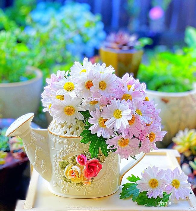 """Bị """"hớp hồn"""" bởi màu trắng tinh khôi của cúc dại, vợ đảm tại Úc thử tài với 1001 cách cắm hoa, tô điểm cho phòng khách trở nên thơ mộng lãng mạn - Ảnh 6."""