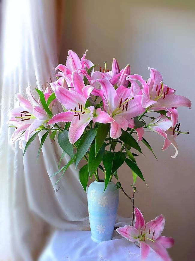 """Bị """"hớp hồn"""" bởi màu trắng tinh khôi của cúc dại, vợ đảm tại Úc thử tài với 1001 cách cắm hoa, tô điểm cho phòng khách trở nên thơ mộng lãng mạn - Ảnh 12."""