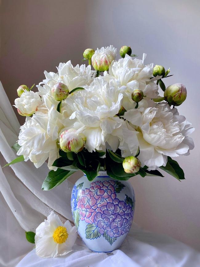 """Bị """"hớp hồn"""" bởi màu trắng tinh khôi của cúc dại, vợ đảm tại Úc thử tài với 1001 cách cắm hoa, tô điểm cho phòng khách trở nên thơ mộng lãng mạn - Ảnh 13."""