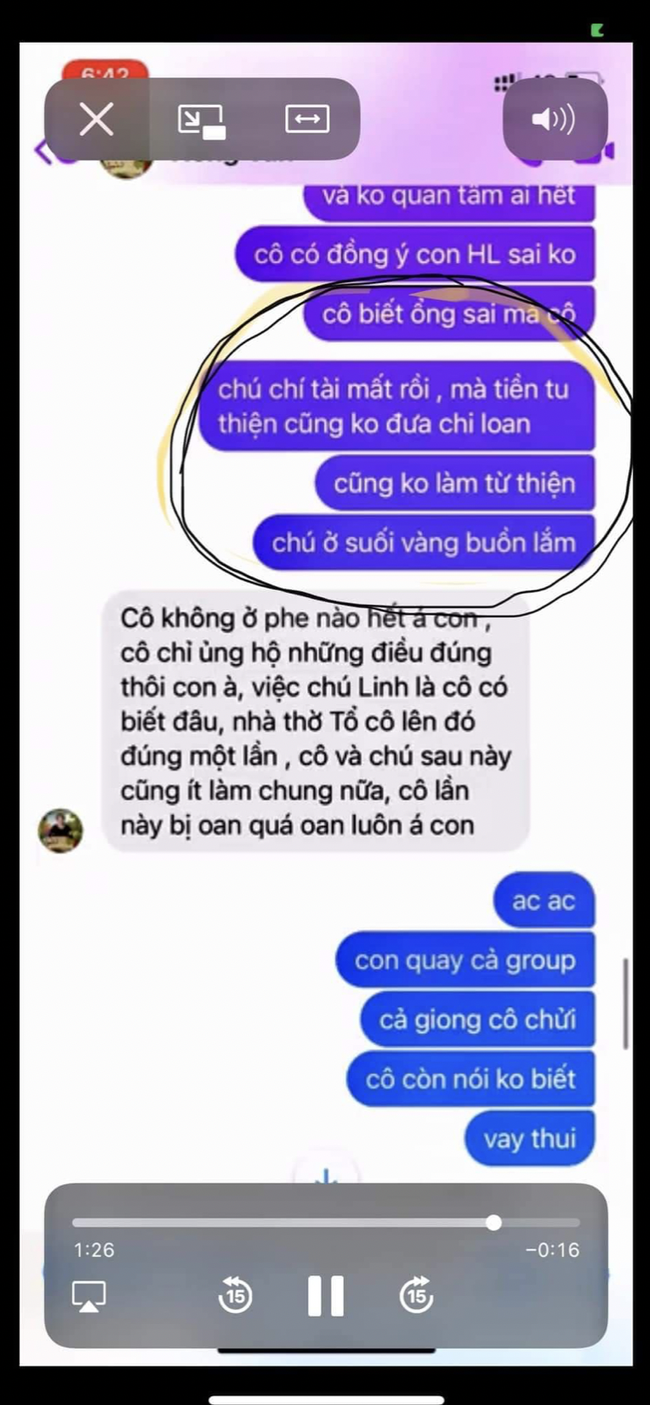 Tất tần tật về những nhân vật trong drama của bà Nguyễn Phương Hằng - Ảnh 31.