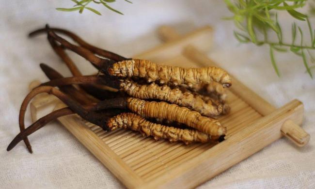 Từ vụ nhập viện do ăn sản phẩm giống đông trùng hạ thảo: Cẩn trọng mua dùng phải đông trùng hạ thảo giả, kém chất lượng - Ảnh 4.