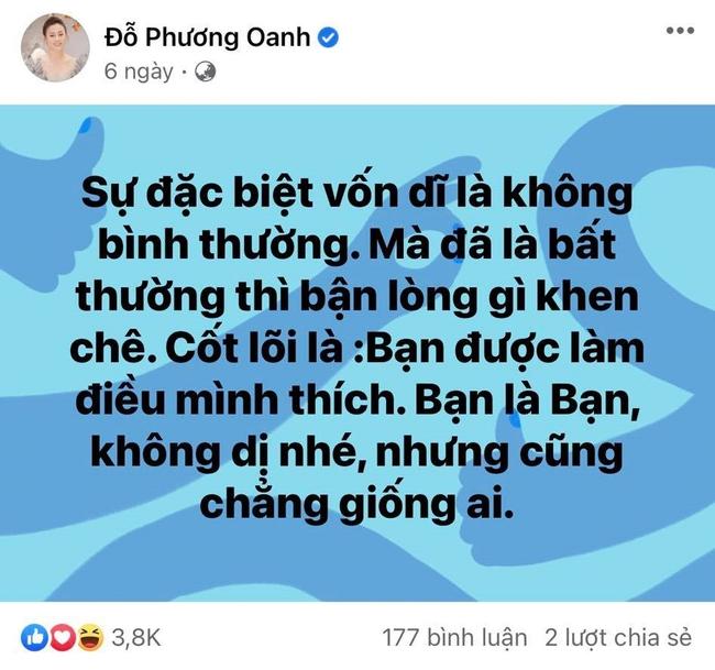 Phương Oanh bị chê diễn lố, liên tục đăng status tâm trạng, hàng loạt sao Việt vào bảo vệ - Ảnh 2.