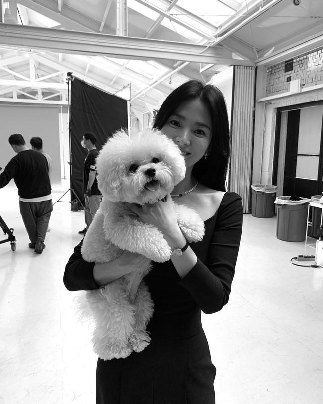 Hành động bất ngờ của Song Hye Kyo ngay khi Song Joong Ki xuất hiện với chiếc áo nhăn nheo như thiếu bàn tay chăm sóc của phụ nữ  - Ảnh 2.