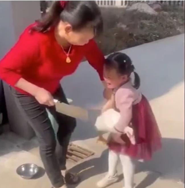 Bé gái 4 tuổi khóc khản cổ không cho bà làm thịt con vịt cưng, dân mạng sụt sùi nhớ lại kỷ niệm ám ảnh thời thơ ấu - Ảnh 1.