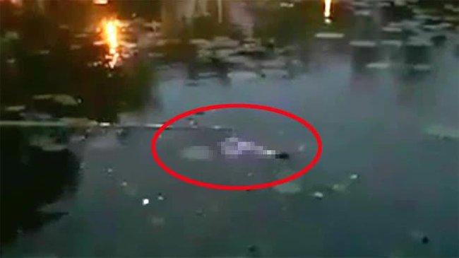 SỐC: Phát hiện thi thể 2 người đàn ông trong một đêm ở Quảng Trị - Ảnh 1.