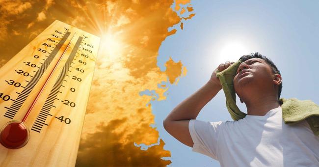 Chuyên gia chỉ cách phòng tránh sốc nhiệt, say nắng trong thời điểm nắng nóng gay gắt - Ảnh 2.