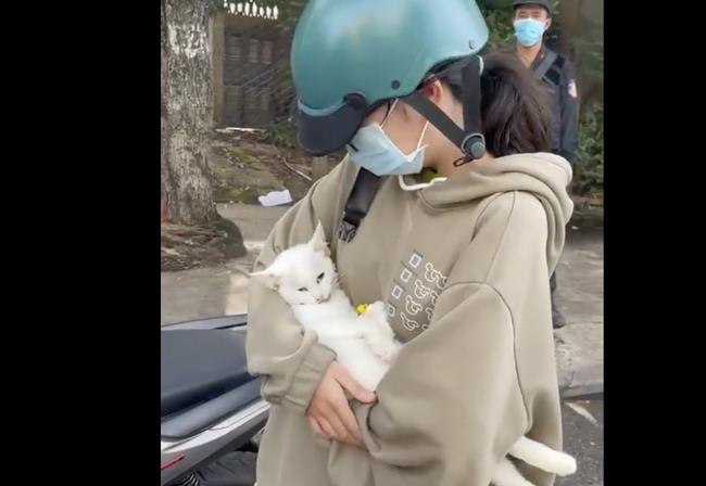 Có thể khởi kiện người tự ý đăng clip nữ sinh khóc cầu xin đưa mèo đi chữa bệnh mùa dịch lên mạng xã hội - Ảnh 2.