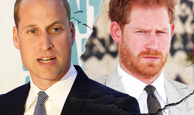 """Harry làm lu mờ anh trai khi đưa ra thông báo mới """"chiếm sóng"""" và phản ứng của Hoàng tử William - Ảnh 2."""