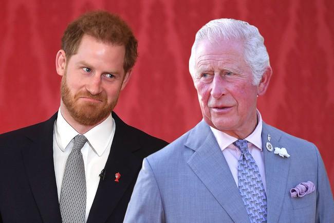 """Phản ứng của hoàng gia khi Harry tuyên bố viết hồi ký và tiết lộ số tiền """"khủng"""" anh nhận được - Ảnh 2."""