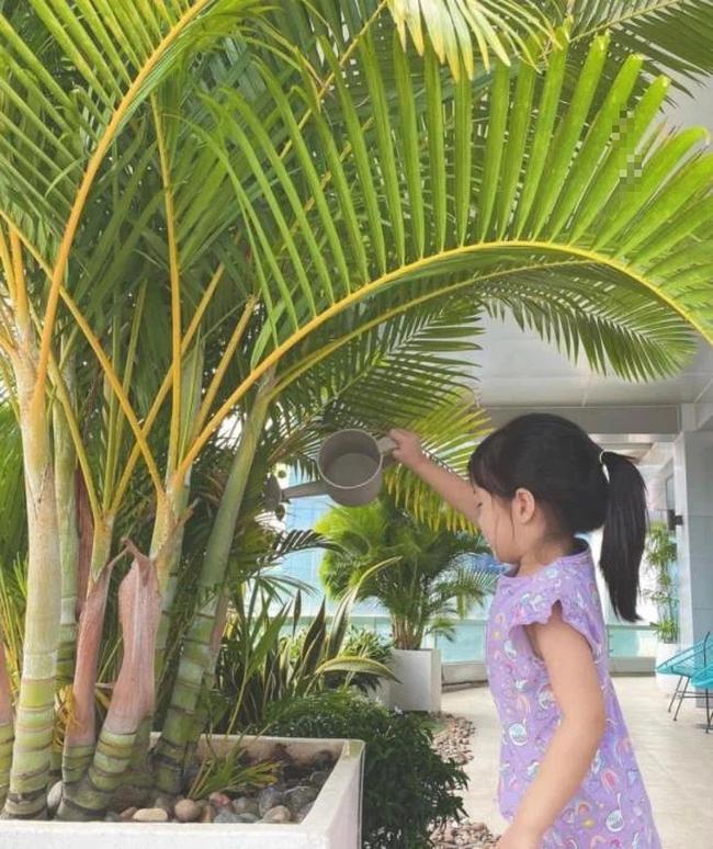 Con gái xinh như búp bê của Hoa hậu Đặng Thu Thảo: Nhìn chùm ảnh này, đố ai dám bảo cô nhóc là tiểu thư được cưng chiều - Ảnh 3.