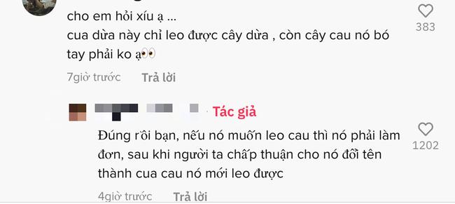 """Đăng clip Cua dừa đang leo cây, TikToker phải giải thích với từng người thông tin về loài cua """"sợ nước nhất Việt Nam"""" này!  - Ảnh 2."""