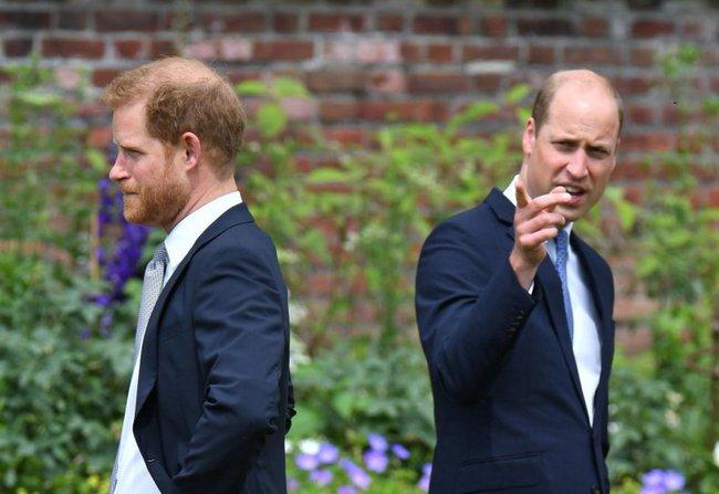 Hoàng tử William hối tiếc vì lỡ nói ra một câu khiến em trai Harry ôm hận mãi trong lòng - Ảnh 3.