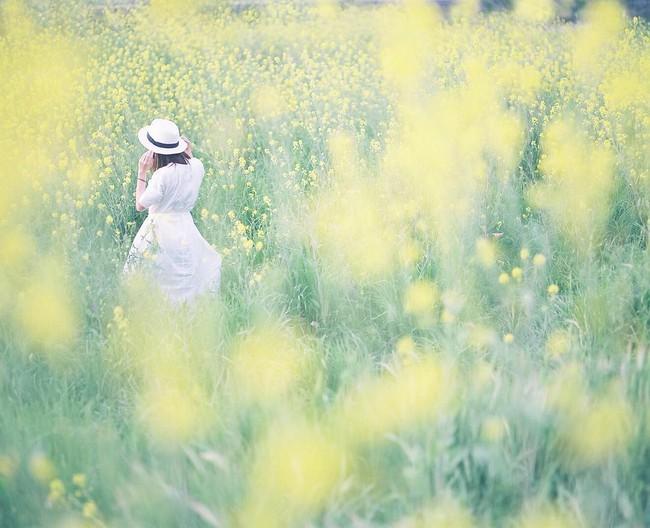 Năm Đinh Dậu 2017, con giáp nữ nào đem lại may mắn và tài lộc cho chồng và gia đình? - Ảnh 2.