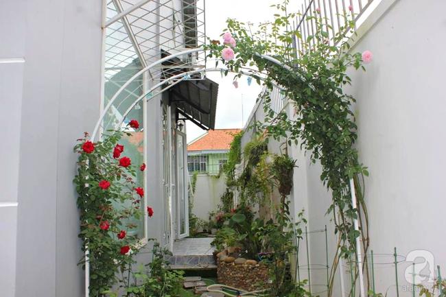 Ngôi nhà vườn rộng 200m² nhìn đâu cũng thấy cây và hoa rực rỡ ở TP HCM - Ảnh 5.