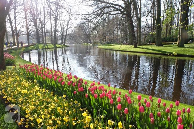 Lạc vào thiên đường hoa 7 triệu bông, một năm chỉ mở cửa một lần - Ảnh 1.