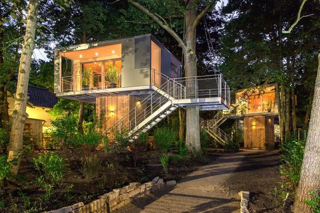 Ngắm ngôi nhà trên cây đẹp lãng mạn giữa đồi núi mênh mông - Ảnh 11.