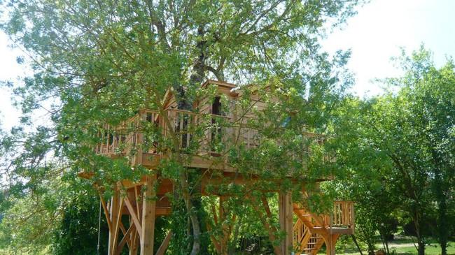Ngỡ ngàng với ngôi nhà nhỏ xíu có bồn tắm tiện nghi nhìn ra rừng cây - Ảnh 1.