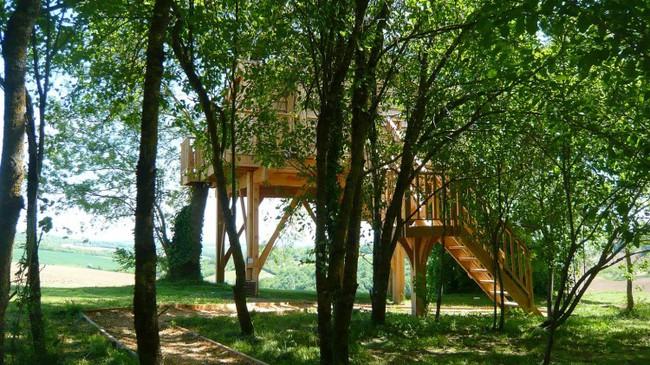 Ngỡ ngàng với ngôi nhà nhỏ xíu có bồn tắm tiện nghi nhìn ra rừng cây - Ảnh 2.