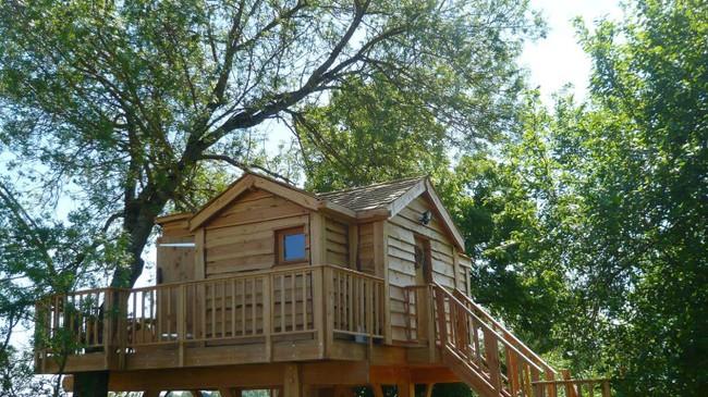 Ngỡ ngàng với ngôi nhà nhỏ xíu có bồn tắm tiện nghi nhìn ra rừng cây - Ảnh 4.